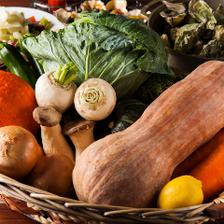 契約農家直送の野菜たち