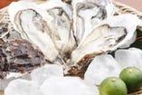 北海道厚岸産の生牡蠣も肉厚たっぷりでとっても美味です。