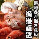 島根・山口・新潟の漁港より直送鮮魚【日本】