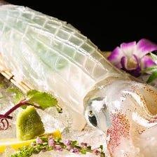 ヤリイカ活造りなど、鮮魚を堪能