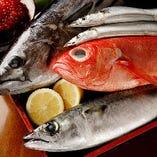 魚介やお肉、野菜など、旬の食材を使用したコースを豊富にご用意