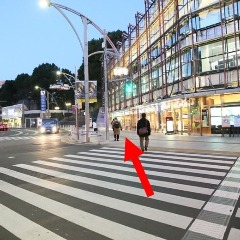 ④横断歩道を渡り、左斜めに進みます。
