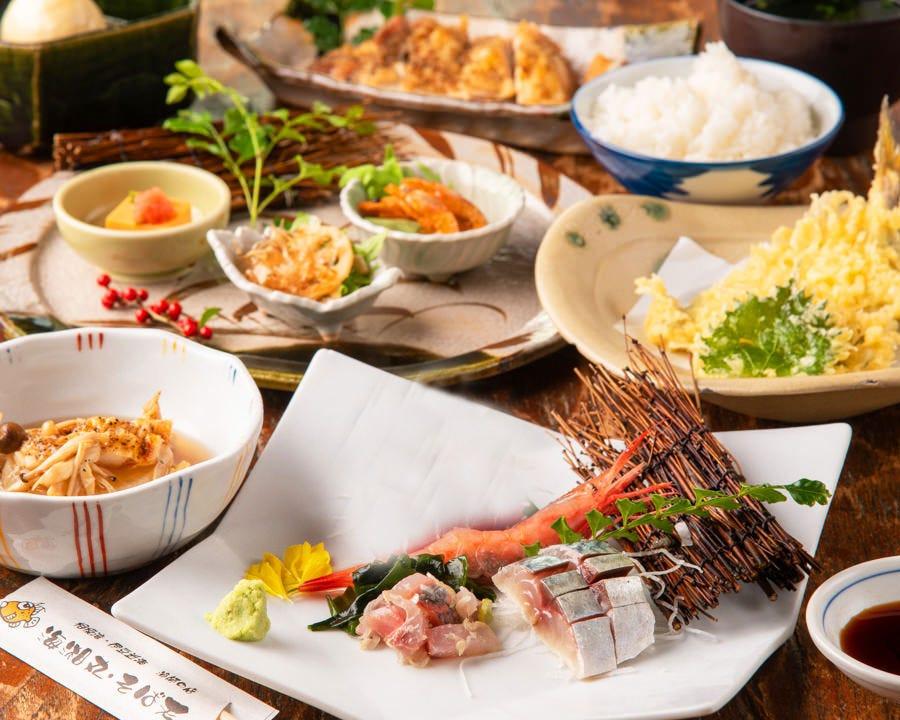 【4月~6月限定】昼会席!旬の味わい「地魚のお刺身盛り合わせ」「茅ヶ崎漁港直送の天ぷら」など