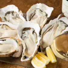 本日のおすすめ牡蠣