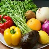 ◇ こだわりの野菜料理 ◇ 鮮度にこだわる厳選素材の旨みを活かした調理法でご提供
