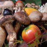 季節の野菜 いろいろ