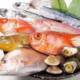 【市場直送海鮮】海鮮は鮮度を保ったまま低価格での提供を実現!