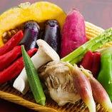 京野菜や鎌倉野菜など季節に合わせた食材を仕入れています