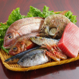 豊洲へ通い厳選して仕入れる築地直送の朝獲れ鮮魚【東京都】