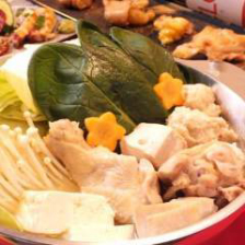 【刀根鶏】の鶏炊き(6品)