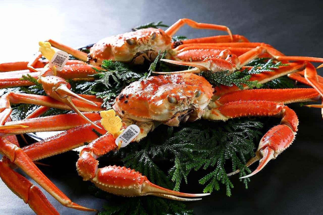 活きた蟹は旨味抜群【越前かに料理】