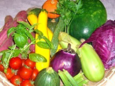 地場農家さんの旬な野菜