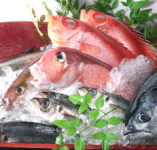 最高鮮度の海鮮【青森県】