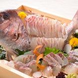 【宴会をもっと豪華に!】各コースに鯛の姿造りを追加できます(1台)
