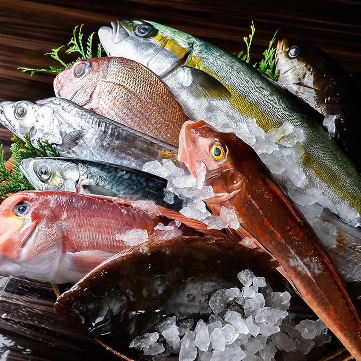 漁港直送鮮魚や契約農家直送野菜使用