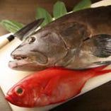 天然本クエと金目鯛は当店の二枚看板!ぜひご賞味ください
