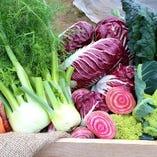 さいたま市産ヨーロッパ野菜【埼玉県さいたま市岩槻区】