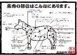 馬肉の希少部位【長野県】
