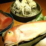 競り次第の鮮魚