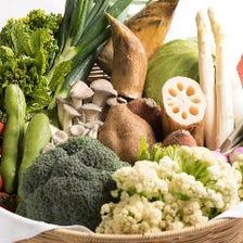 厳選した季節の新鮮野菜