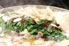 究極の味噌もつ鍋