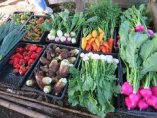野菜本来の味と香り「金土野菜」【大分県由布市狭間町】