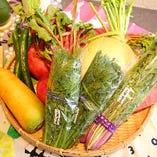 ◆新鮮野菜◆【日本】