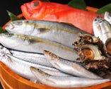 東京で4代続く老舗魚屋『魚耕』の直営だからこそ仕入れられる極上の築地鮮魚。