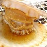 ホタテの一枚焼き/イカの丸焼き