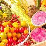 旬野菜【新鮮な季節の味】