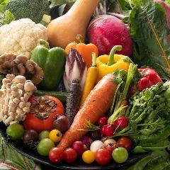 【白州郷牧場】新鮮有機野菜の贅沢バーニャカウダ