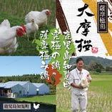 新鮮な鶏が刺身が一番旨い!【鹿児島県】