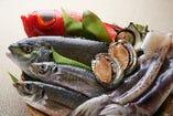 四季折々の自慢の鮮魚をお造り・煮物・焼き物で!!!【豊洲市場】