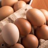 卵【栃木県/他】