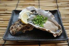 活 生牡蠣
