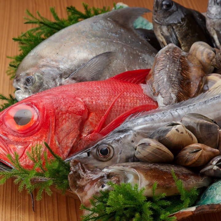 当日、地元和歌山の漁港で水揚げされた新鮮な魚介を使用!