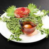 ビオランテ(花獣つけ麺形態)