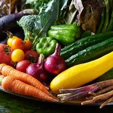 高知県のオーガニック野菜