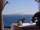 伊豆の海と大島と初島を望む