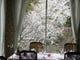 桜の咲くころ