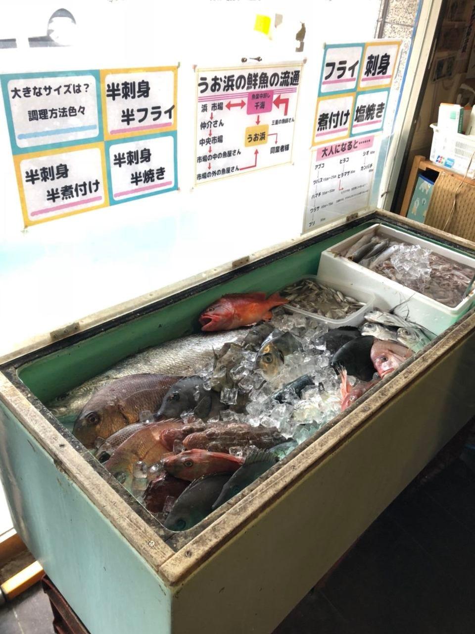 選べる鮮魚コーナー