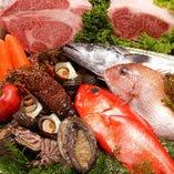 朝〆鮮魚と魚介類【豊洲市場】