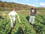 季節の自家農園野菜を使用 化学肥料、農薬は不使用です。