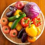 彩り豊かな新鮮野菜【全国各地】