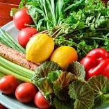 懇意の八百屋から仕入れる瑞々しい新鮮な旬野菜
