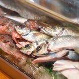 大将の地元・壱岐を中心に全国津々浦々の鮮魚が集う
