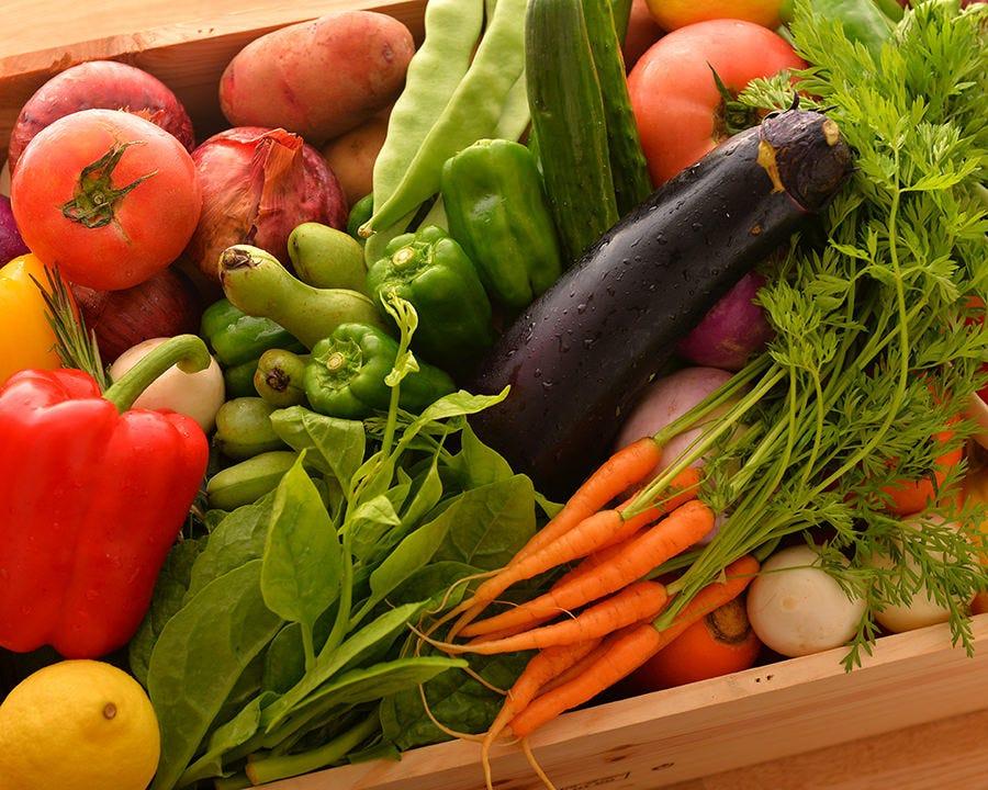 しっかりと野菜がとれるメニュー