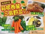 箱根西麓三島野菜を使った絶品野菜料理も豊富にご用意。