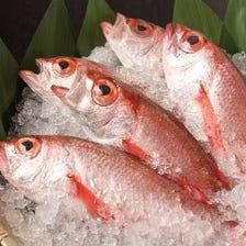 高級魚■のど黒をリーズナブルにご提供