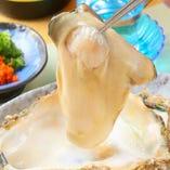 かき酢(フライ、バター焼き)